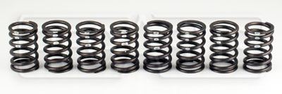 Large photo of 2.0L Heavy-Duty Valve Spring Set, Pegasus Part No. 172-13