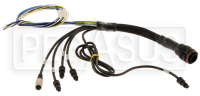 Large photo of EVO3 Pro Auxiliary Harness, Pegasus Part No. MC-326