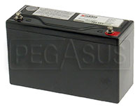 Click for a larger picture of (B) 15 AH Sealed Racing Battery