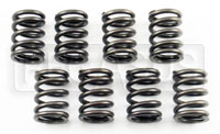 Click for a larger picture of FF1600 Valve Spring Set  by Ivey Engines