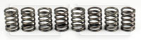 Click for a larger picture of 2.0L Valve Spring Set of 8 (Ivey Mfg.)