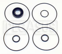 Click for a larger picture of 2.0L Titan Standard Pump O-Ring & Seal Kit