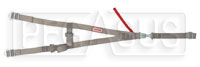 Click for a larger picture of Simpson Platinum Cage Net, SFI 37.1