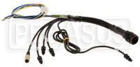 Click for a larger picture of EVO3 Pro Auxiliary Harness