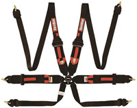 Click for a larger picture of RaceQuip 6-Point HANS Camlock Harness, PU, FIA 8853-2016
